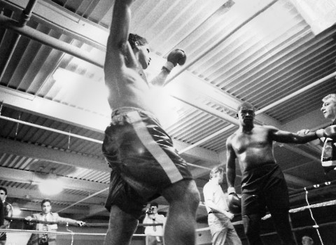 HEAVYWEIGHT BOXER PETER McNEELEY CELEBRATES TKO VICTORY OVER FORMER CHAMPION J.B.WILLIAMSON